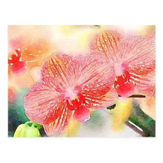 Postal Orquídeas de la acuarela