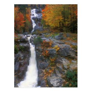 Postal Otoño de plata de la cascada