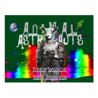 Postal Ovejas animales de los astronautas