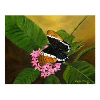 postal Oxidado-inclinada de la mariposa de Maria