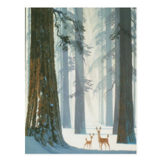Postal País de las maravillas del invierno