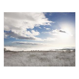 Postal paisaje del campo herboso nevado