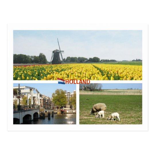 Postal Paisaje del holandés de Amsterdam de los tulipanes