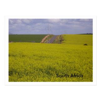 Postal Paisaje surafricano