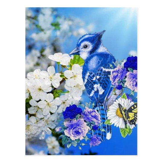 Postal pájaro azul