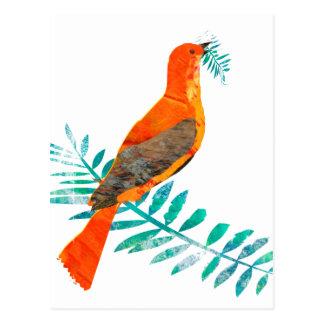 Postal Pájaro bonito del rojo de la paz de la rama verde