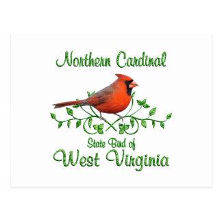 Postal Pájaro cardinal de Virginia Occidental