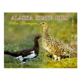 Postal Pájaro de estado de Alaska - perdiz nival del