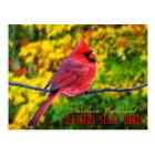Postal Pájaro de estado de Illinois - cardenal