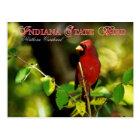 Postal Pájaro de estado de Indiana - cardenal