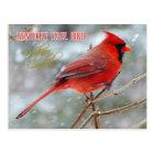 Postal Pájaro de estado de Kentucky - cardenal