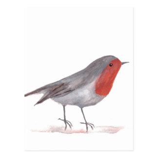 Postal Pájaro del petirrojo