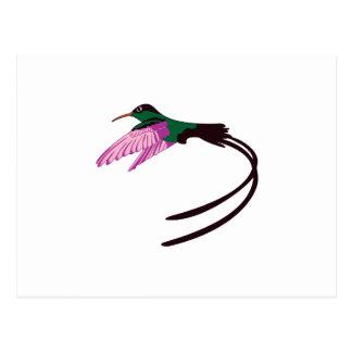 Postal Pájaro jamaicano