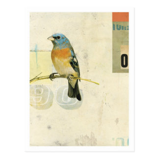 Postal Pájaro No.1