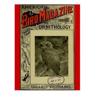Postal Pájaro revista 8 de junio de 1903