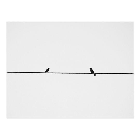Postal Pájaros Amigos
