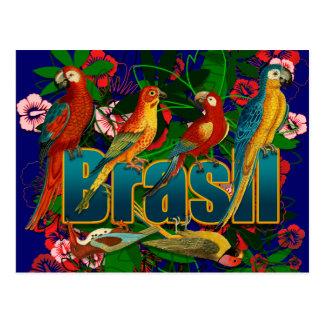 Postal Pájaros tropicales florales del Brasil