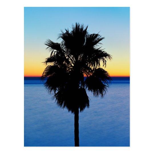 Postal Palmera de California y puesta del sol del Océano