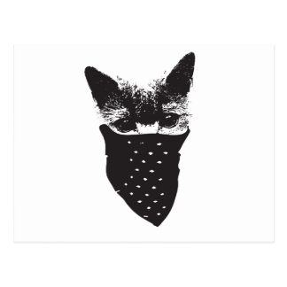 Postal pañuelo del gato