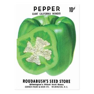 Postal Paquete verde de la semilla del paprika