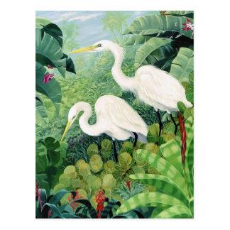 Postal Pares del Egret