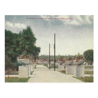 Postal Parque Chicago Illinois de Garfield del vintage