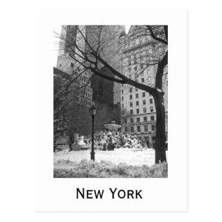 Postal Parque Nevado en Nueva York