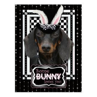Postal Pascua - algún conejito le ama - Dachshund