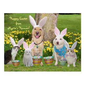 Postal ¡Pascua feliz del ser humano de Myrtie!