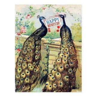 Postal Pavos reales del vintage - el día de madre feliz