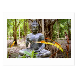 Postal Paz   del Buddhism de BUDA