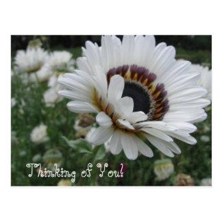 Postal Pensamiento alegre en usted