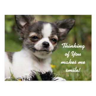 Postal Pensamiento en usted chihuahua