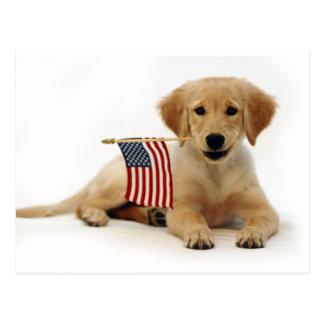 Postal Perrito de oro y bandera americana