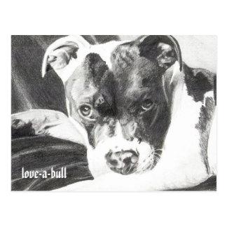 Postal Perrito de Pitbull en el lápiz 4 de Jacob Grimm