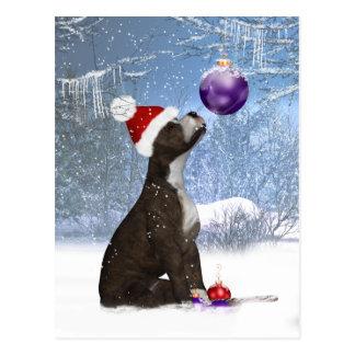 Postal Perrito de Staffordshire bull terrier - invierno