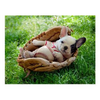Postal Perrito lindo en un mitón de béisbol