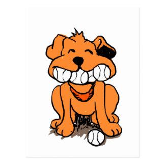 Postal Perro con las bolas en la boca