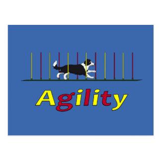 Postal Perro de la agilidad