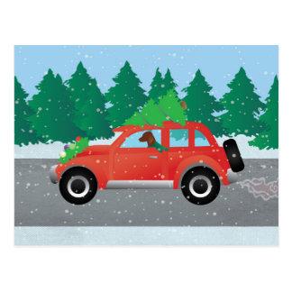 Postal Perro de Vizsla que conduce un coche del navidad