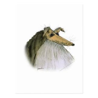 Postal Perro pastor de Shetland, fernandes tony