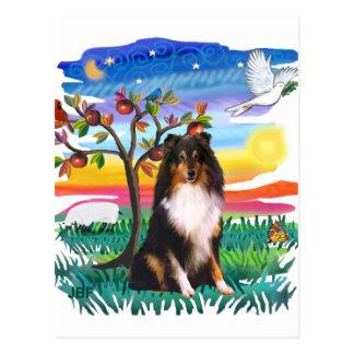 Postal Perro pastor de Shetland (tri)