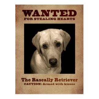 Postal Perro perdiguero bribonesco, aka laboratorio