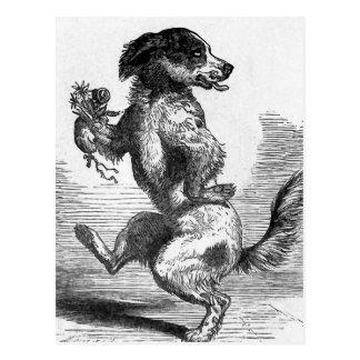 """Postal """"Perro que baila ejemplo del vintage de una"""