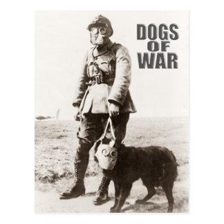Postal Perros de la careta antigás de la guerra que lleva