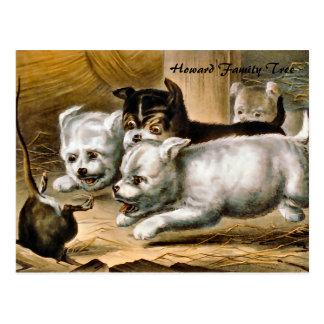 Postal Perros de Terrier que persiguen una rata