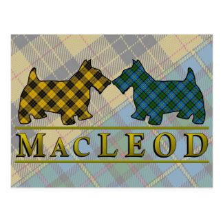 Postal Perros del escocés del tartán de MacLeod del clan
