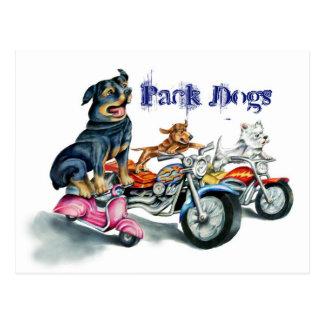 Postal Perros del paquete