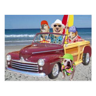 Postal Perros/laboratorios en la playa en un Woodie
