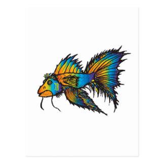 Postal Pescados de arco iris